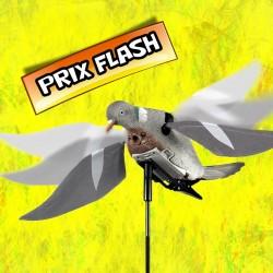 Pigeon à ailes battantes électriques