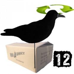 """12 corbeaux floqués \""""tourne au vent\"""""""