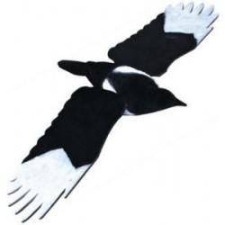 Pie ailes déployées