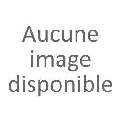 Blette de canard colvert mâle